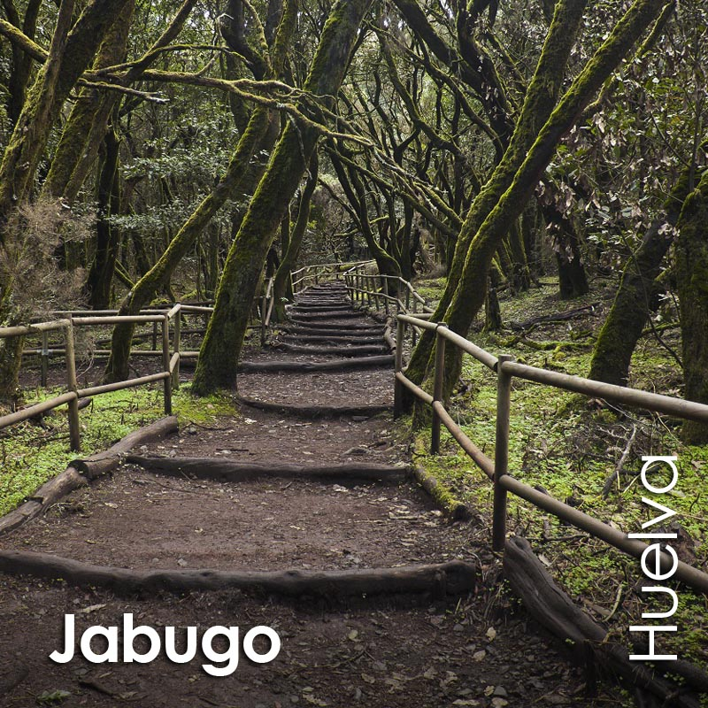 Jabugo - MiCasaOnline